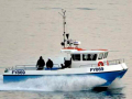 The-modern-shark-boat.-Mystique-II