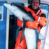shark-fishing-cornwall-00